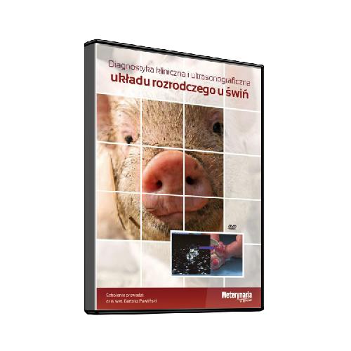 Diagnostyka kliniczna i ultrasonograficzna układu rozrodczego u świń